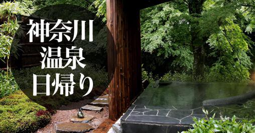 神奈川 日帰り 温泉
