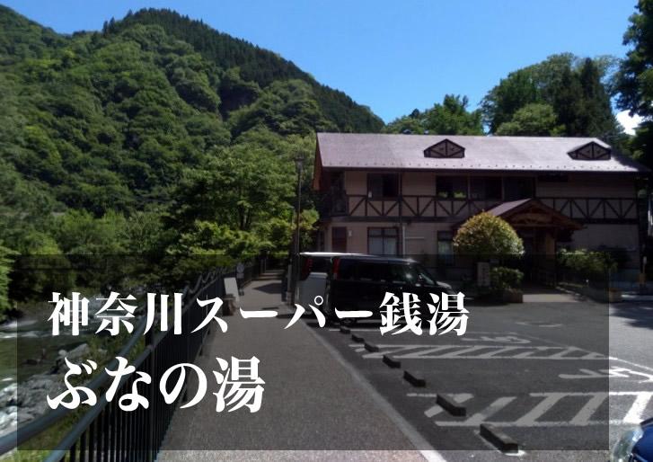 ぶなの湯 神奈川 スーパー銭湯 日帰り温泉